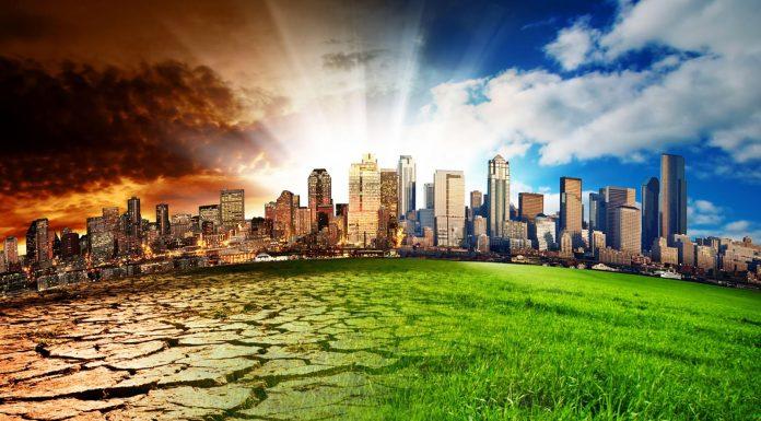 Todavía hay alguien que niega el cambio climático